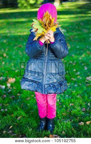 Little Girl With Maple Leaves Covering Her Face In Park