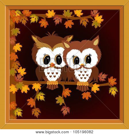 Picture with couple owls on autumn tree