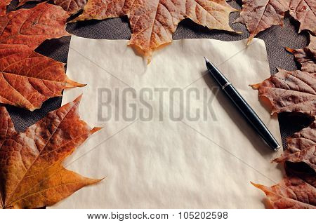 Vintage Still Life - Yellowed Paper And Old Ink Pen Among Dry Maple Leaves