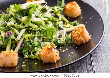 Grilled Scallops With Crispy Green Salad