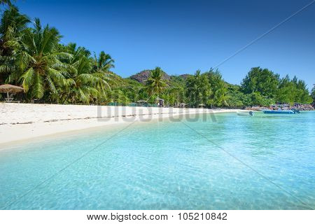 Tropical beach at sunny day
