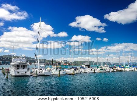 Many beautiful moored sail yachts in the sea port