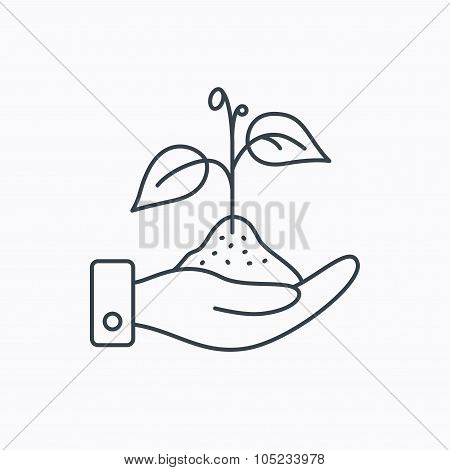 Save nature icon. Hand with plant sprout sign.