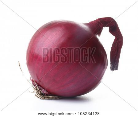 Red round onion isolated on white
