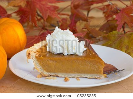 Pumpkin Pie Slice Closeup