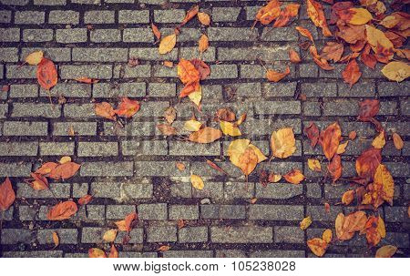 Autumn texture with paving stones and yellow leaves. Illustration