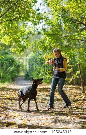 Smiling woman with a ball is playing to black short-wooled dog in the park.