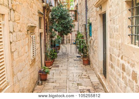 Plants vases in narrow street in the Old Town in Dubrovnik, Croatia, mediterranean ambient