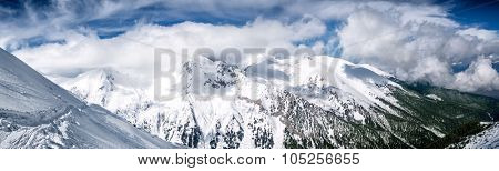 Winter mountain panorama with snowy trees on slope on resort Bansko, Bulgaria