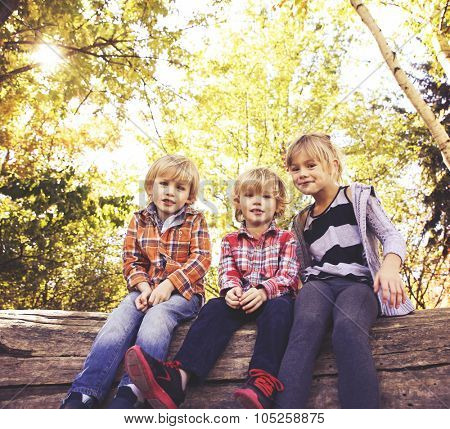cute siblings sitting on a tree trunk during summer toned with a retro vintage instagram filter effect app or action