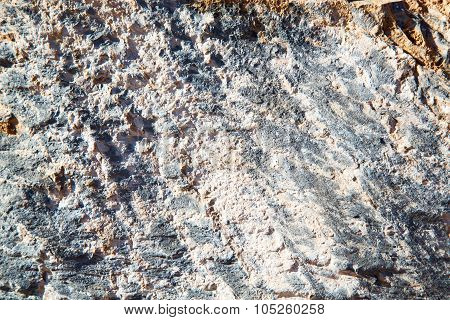 Dirty  Stone In Italy White Gray Rock    And Texture