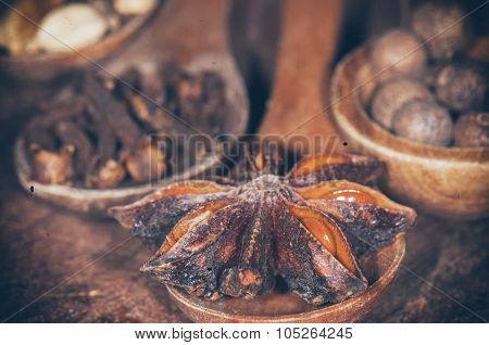 Anise seed, nutmeg, clove and cardamom on grunge wooden plank