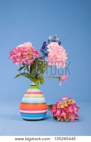 Hydrangeas pink and blue and other flowers on colorful background
