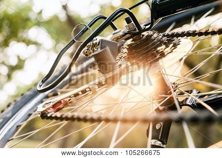 Close up of a Bicycle wheel.
