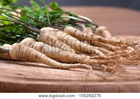 Parsley With Roots On Wooden Cutting Board