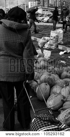 Woman Pumpkin Buyer