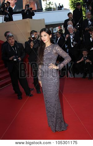 CANNES, FRANCE - MAY 17: Elodie Yung attends the Premiere of 'Le Passe' (The Past) during The 66th Annual Cannes Film Festival at Palais des Festivals on May 17, 2013 in Cannes, France.