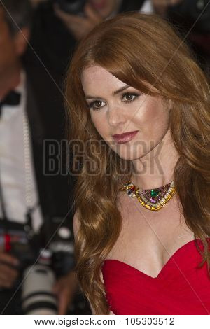 CANNES, FRANCE - MAY 15:  Isla Fisher  attends 'The Great Gatsby' Premiere during the 66th Annual Cannes Film Festival at the Theatre Lumiere on May 15, 2013 in Cannes, France.