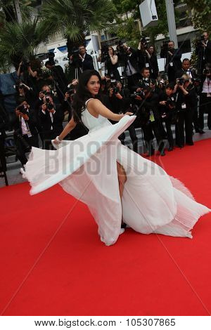 CANNES, FRANCE - MAY 22: Mallika Sherawat attends the 'Jimmy's Hall' premiere during the 67th Annual Cannes Film Festival on May 22, 2014 in Cannes, France.