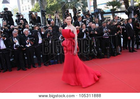 Erin O'Connor attends the 'Carol' Premiere during the 68th annual Cannes Film Festival on May 17, 2015 in Cannes, France.
