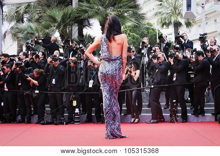 Megan Gale attends the 'Sicario' premiere during the 68th annual Cannes Film Festival on May 19, 2015 in Cannes, France.