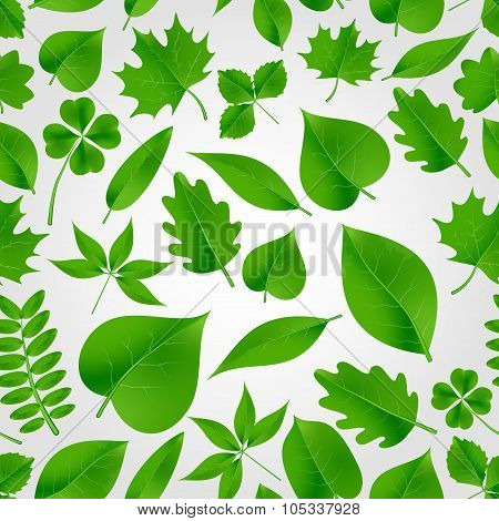 Natural Green Beautiful Leaves Icon Seamless Fall Pattern Eps10
