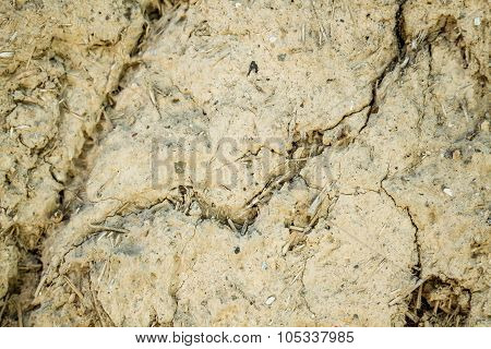 Old Cracked Wall Texture With Adobe And Dry Straw