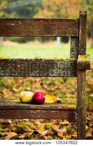 Apples and leaves on a bench in the orchard