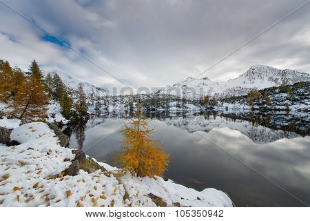 Contrast Autumn Winter Alpine Lake