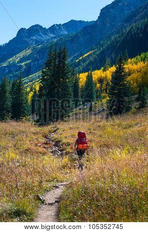 Hiker Backpacker Colorado Fall Foliage Colors