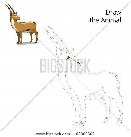 Draw animal gazelle educational game
