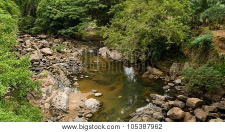 Tropical Creek