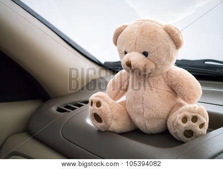 Teddy Bear In Car