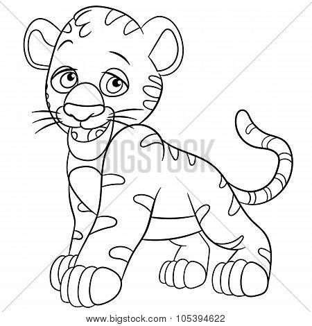 Shy Tiger Cub