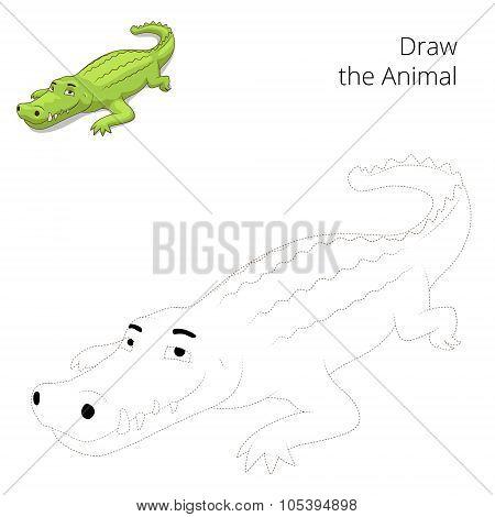 Draw the animal educational game crocodile