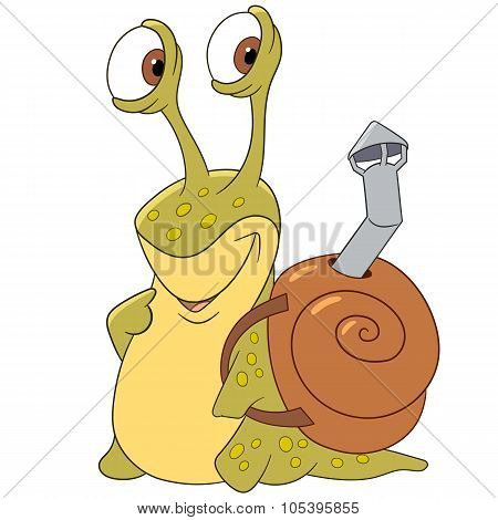 Cute Snail With A Shell