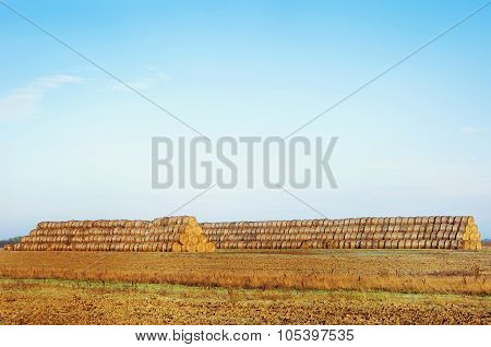 Haystacks On The Field. Rural Landscape.