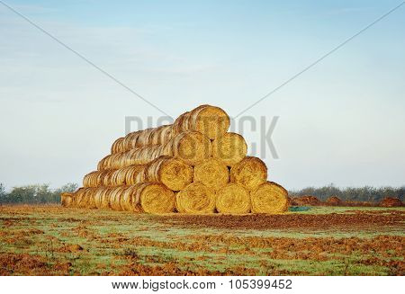 Rolls Of Haystacks On The Field.