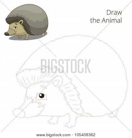 Draw the forest animal hedgehog cartoon