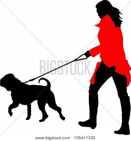 Women In Red Coat Walk With Sharpei