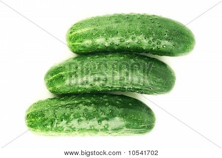 Three Ripe Cucumbers
