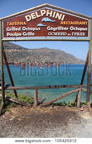 Greek Tavern With Octopus Hanging To Dry, Greece