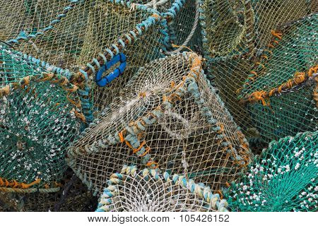Crab And Lobster Traps
