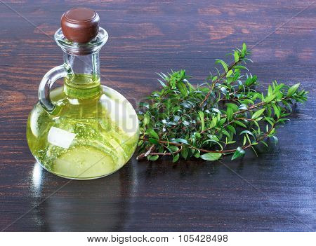 Myrtle Oil In A Bottle Green Branches Of Myrtle, A Medicinal Remedy.