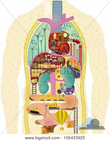 Anatomical cartoon map