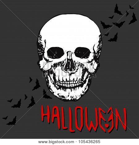 Halloween night concept poster. Skull Vector print.
