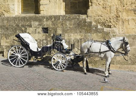 Spanish Horse carriage