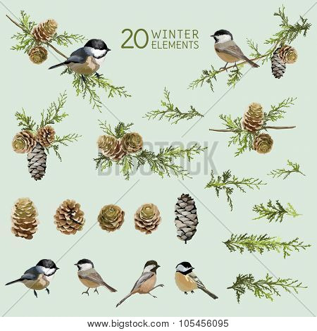 Retro Birds and Winter Elements- in Watercolor Style - vector