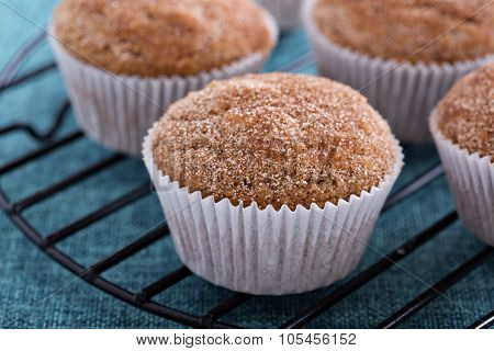 Apple sauce muffins with spices