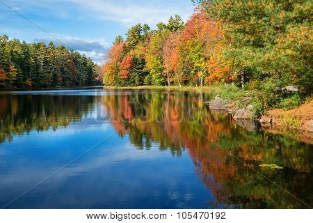 Tree Reflections In Pond Water On A Sunny Autumn Day In New England